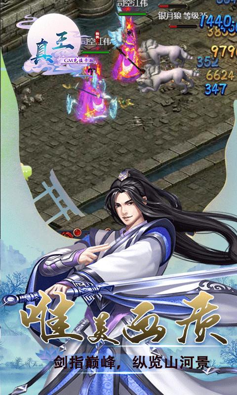真王-GM版截图3